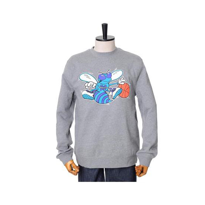 미첼엔네스 NBA 샬롯호네츠 팀로고 맨투맨, MitchellandNess CHARLOTTE HORNETS TEAM LOGO CREW SWEATSHIRTS - GREY - 풋셀스토어